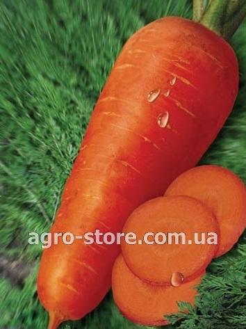 фунгицид инструкция для томатов