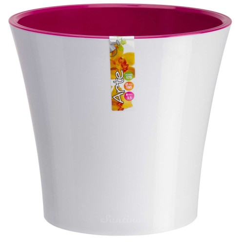 пурпурный чай купить в самаре