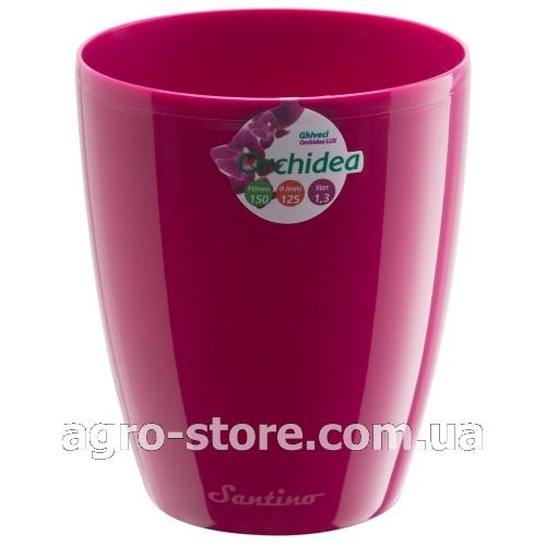 пурпурный чай цена отзывы